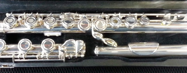 Vestus flute with key extension